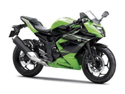Ninja250RR Mono Green